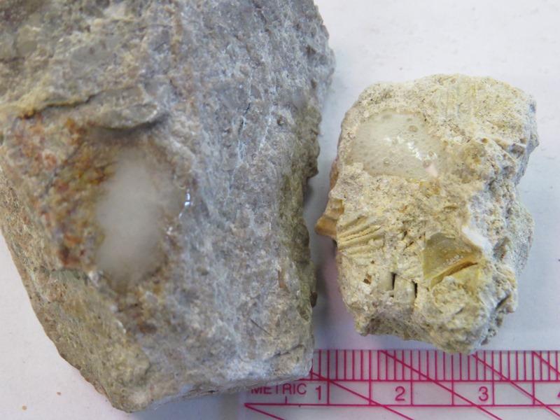 Basics Sedimentary Rocks Table